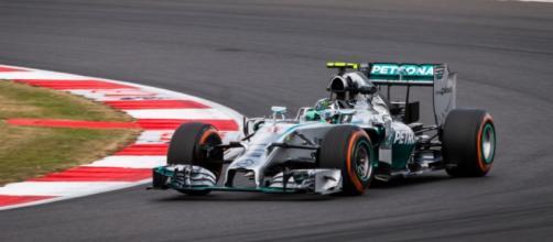Rosberg, vincitore del Gp Brasile 2015