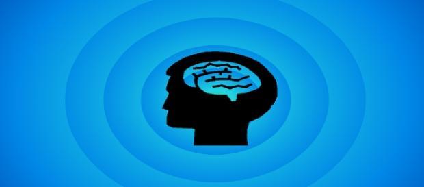 El hemisferio izquierdo del cerebro,