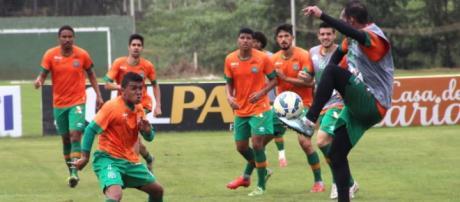 Divulgação / site Oficial do Chapecoense