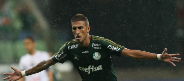 Rafael Marques é o Atacante do Palmeiras