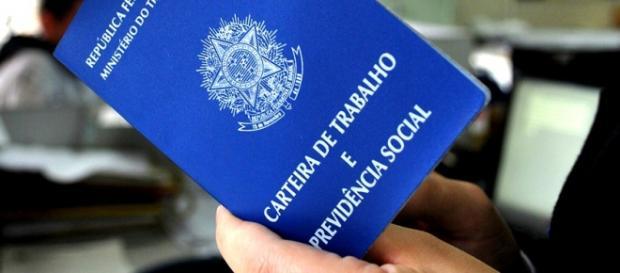 IBGE ofertará 600 vagas em todo o país