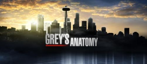 Grey's Anatomy 12, trama nona puntata