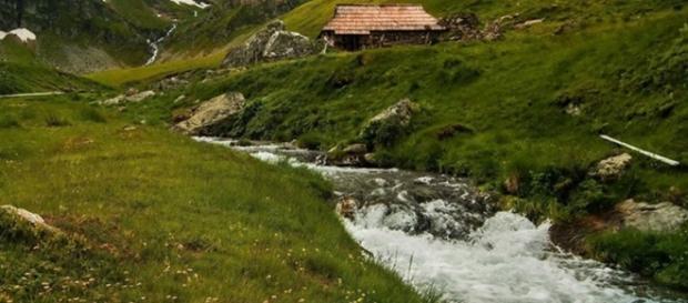 Râul Olteana Țarcu foto_Alin_Drausin