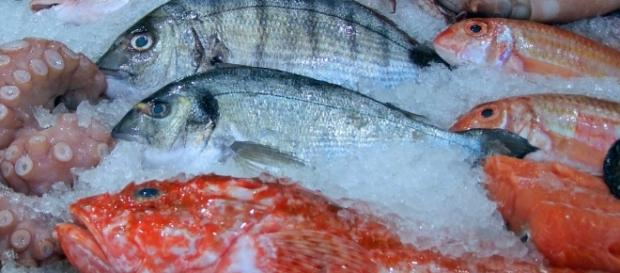 Seafood on sale. Image courtesy Pixabay commons