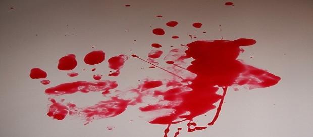 Ferrara: anziana uccisa per 90 euro