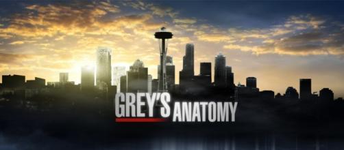 Grey's Anatomy 12: trama quarta puntata