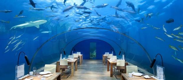 Ithaa underwater restaurant in the Maldives