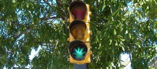 La justicia mexicana dice sí a la marihuana.