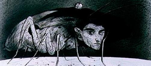 Metamorfosis y proceso de Kafka