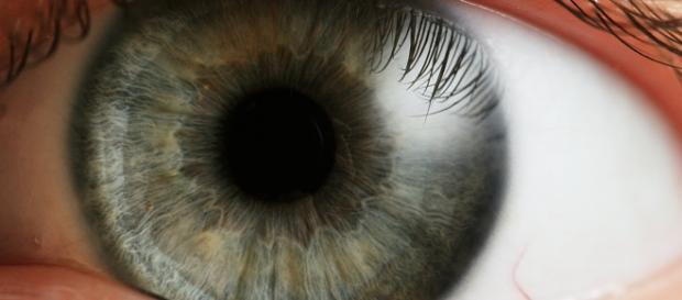Uns ojos descuidados dicen mucho de nosotros