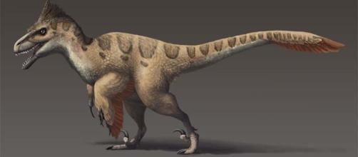 The Dakotaraptor was nearly as large as Utahraptor