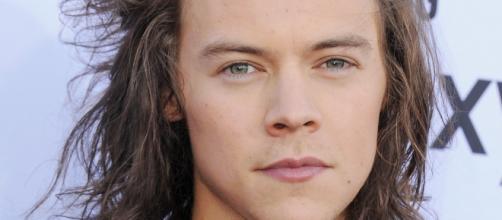 Harry Styles usa roupa feminina.