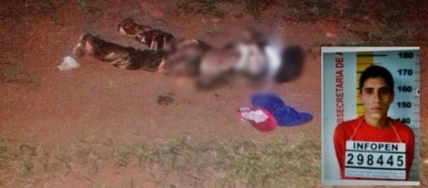 Assaltante morto por mulher de 61 anos