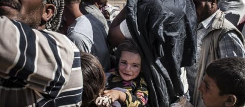 España recibe a 12 refugiados que huyen de Siria