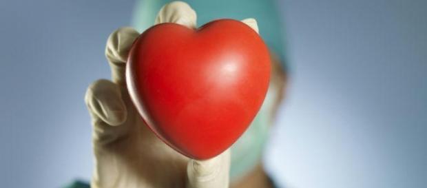 La donación de órganos salva vidas cada año