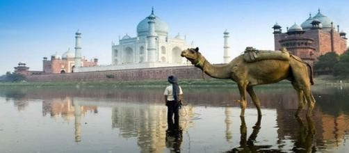 Conheça a cidade de Nova Delhi, Índia