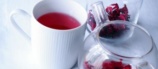 Chá de hibisco faz perder até 4 kg em 15 dias