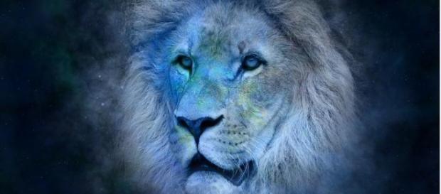 El león (de 23 de julio a 22 de agosto)