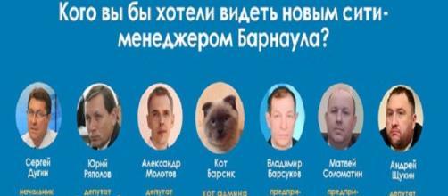 Gato lidera as sondagens em cidade russa