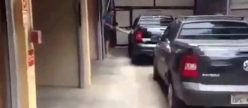 Marido tentou quebrar carro (Reprodução/Youtube)