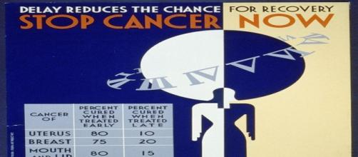 Cancer can be prevented by a healthy lifestyle