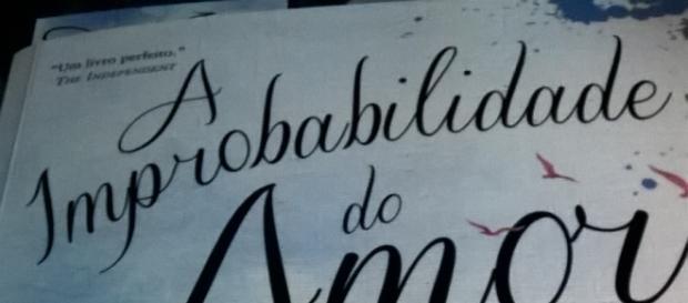 """""""A improbabilidade do amor"""" de Hannah Rothschild."""