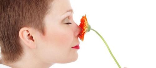 5 formas en la que los olores nos controlan