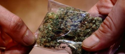 La marihuana ya es legal en Colombia