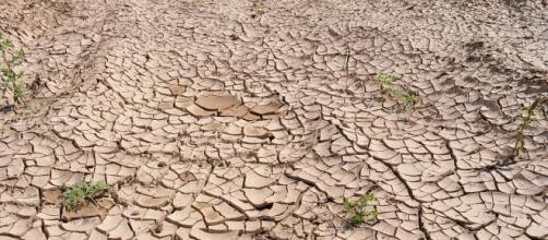 Falta de água em SP alarmou população brasileira