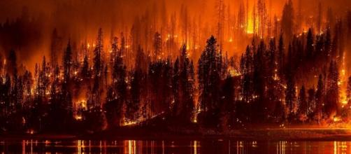 El Niño contribuiu para aumento de incêndios