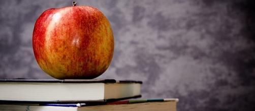 Anno di prova e formazione docenti della scuola