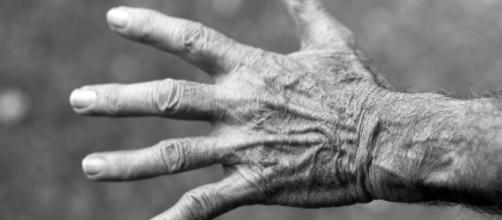 Pensioni, ultime novità ad oggi 29 dicembre