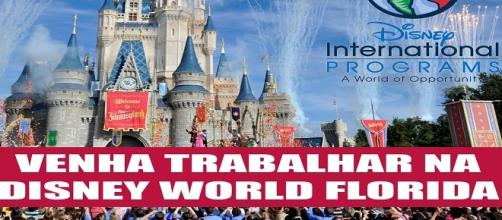 Programa de trabalho na Disney World