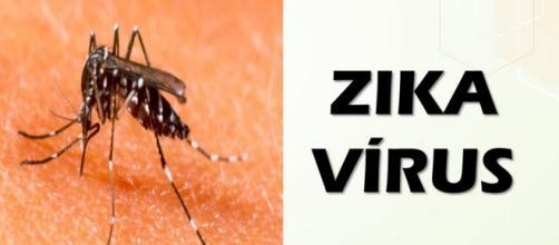 Pessoa sendo picada pelo mosquito transmissor