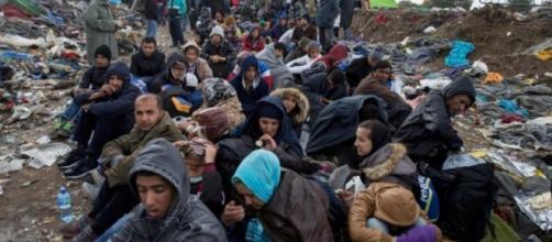 Uma em cada 7 pessoas é refugiada ou imigrante