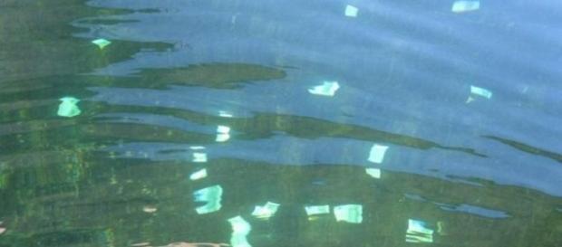 Pe Dunăre au curs o sută de mii de euro