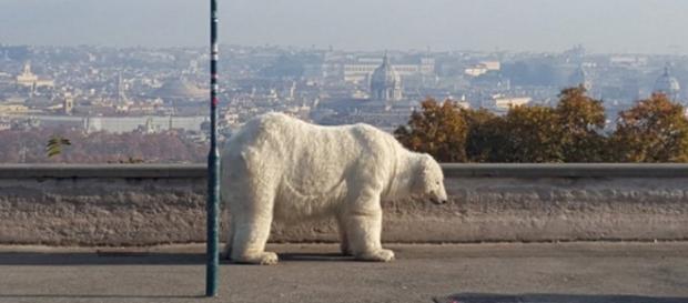 L'orso bianco dell'associazione Greenpeace