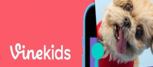 Vine Kids, una plataforma para los más pequeños.