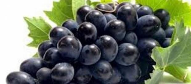 Uvas pretas são benéficas para a sua saúde