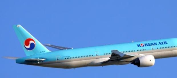 Airbus voou com estragos ligeiros na asa.