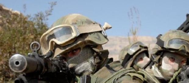 Ejército español en maniobras