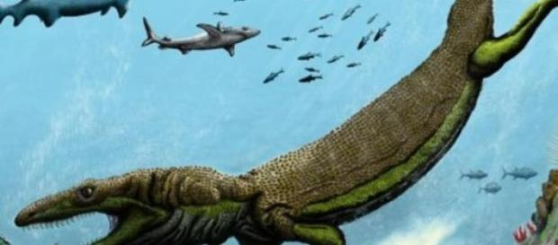 Imagen recreada del fosil encontrado