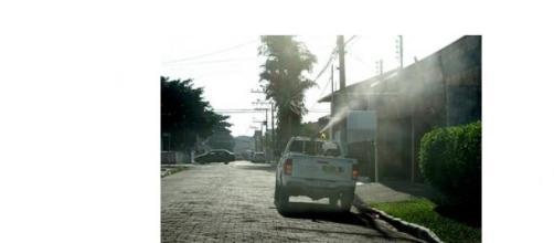 Ação contra a dengue em Itajaí-SC