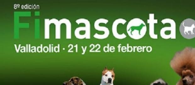 Feria internacional de mascotas en Valladolid