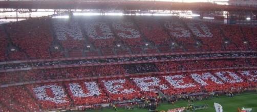 Benfica voltou à Luz e voltou às vitórias.
