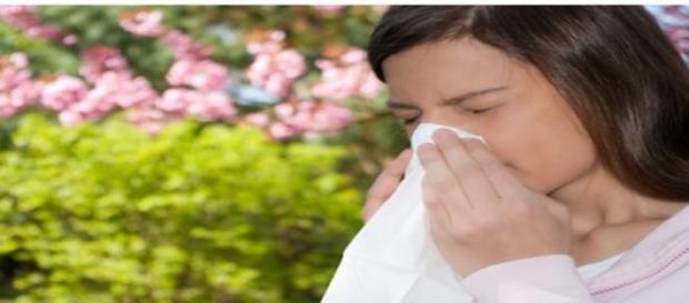 remedii naturale pentru alergiile de sezon