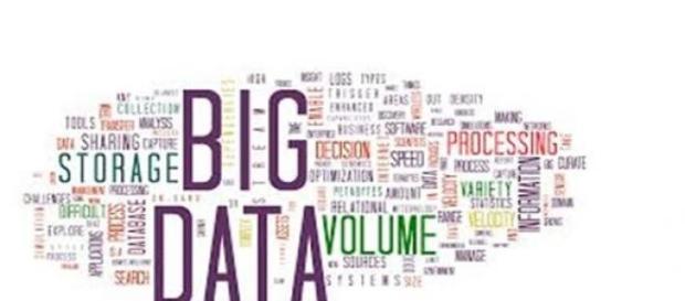 A organização e importância da atividade Big Data