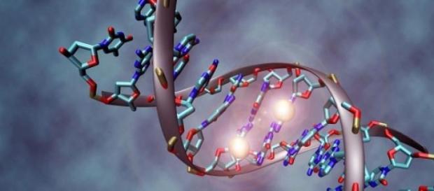 El ADN es un potente instrumento de codificación