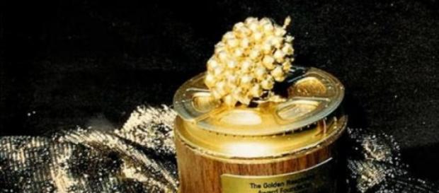 Decernarea  premiilor Zmeura de Aur 2015