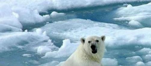 Urge adaptar legislaciones por cambio climatico